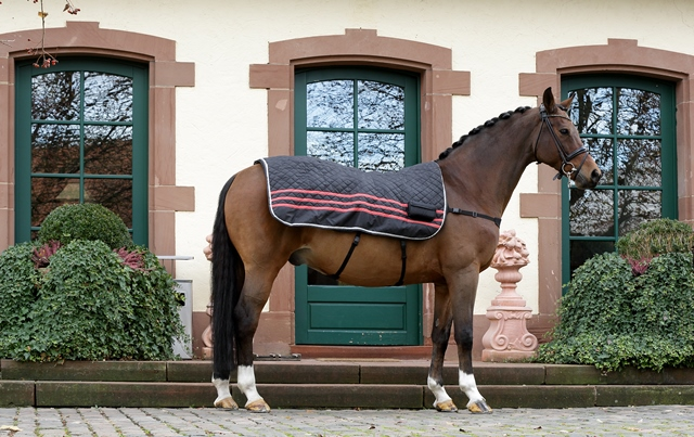 Pferde Decke Fuer Pferde Massierende und wärmende Pferde Relax Massage Decke.